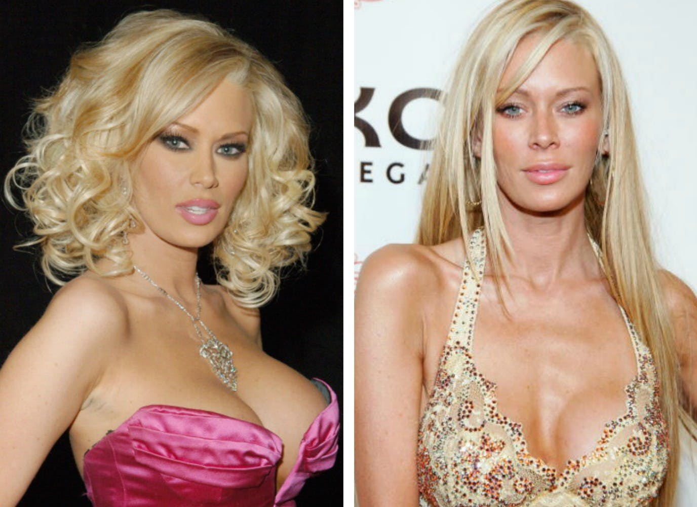 Nicolette Shea Before Plastic Surgery 1