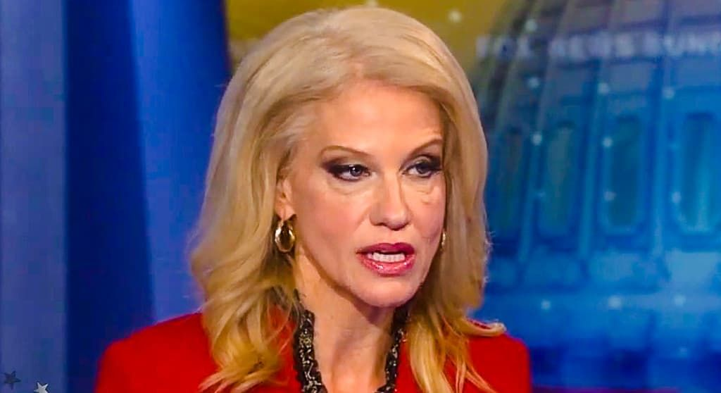 Kellyanne Conway Before And After Plastic Surgery 1