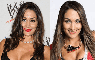 The Bella Twins Before Plastic Surgery photo - 1