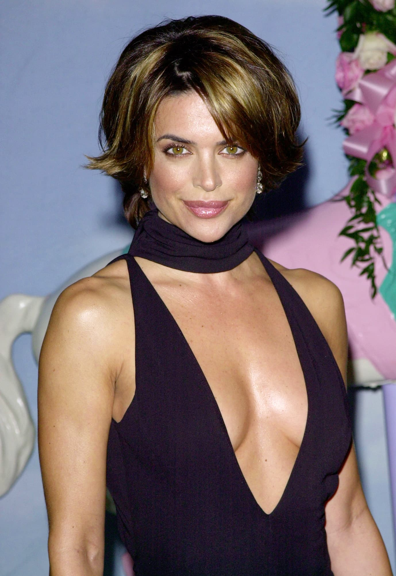Lisa Rinna Before All The Plastic Surgery 1