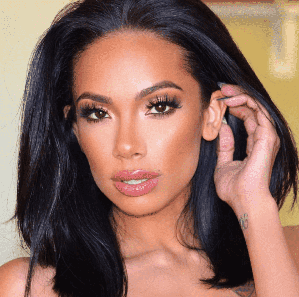 Erica Mena Before And After Plastic Surgery 1