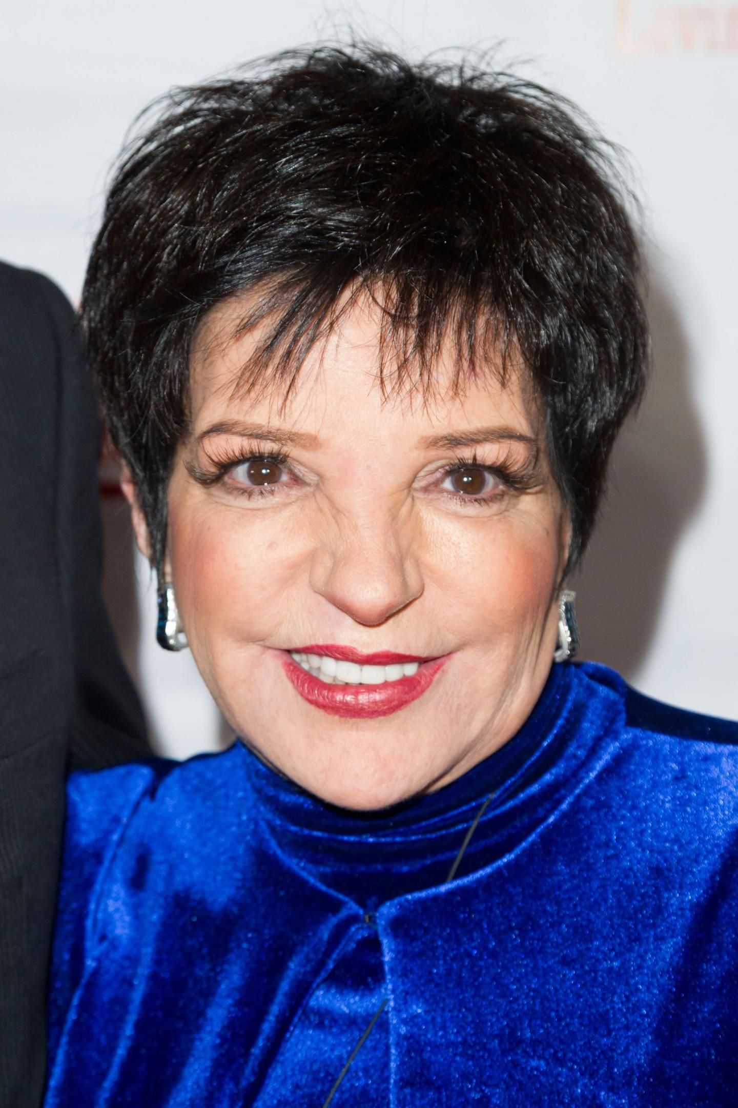Before And After Plastic Surgery Pictures Liza Minnelli 1